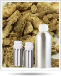 Angelica Root Absolute Oil