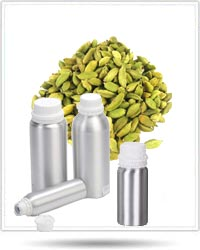 Cardamom Essential Oils